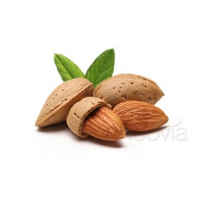 Organic Soothing Sweet Almond Oil