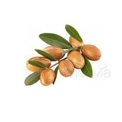 Huile d'Argan 100% pure BIO Lift'Argan