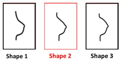Shape 2 breast form - Amoena